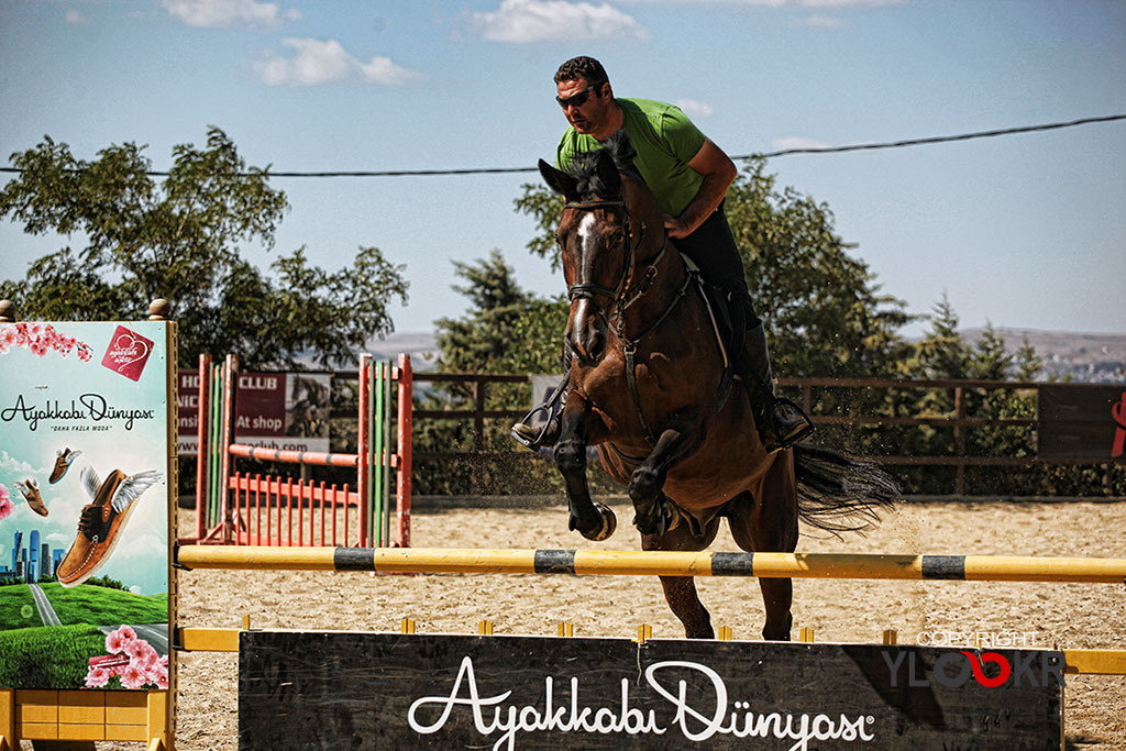 International K9&Horse Club; At Eğitimi; Binicilik; Atlı spor 5