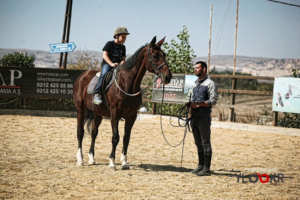 International K9&Horse Club; At Eğitimi; Binicilik; Atlı spor 8