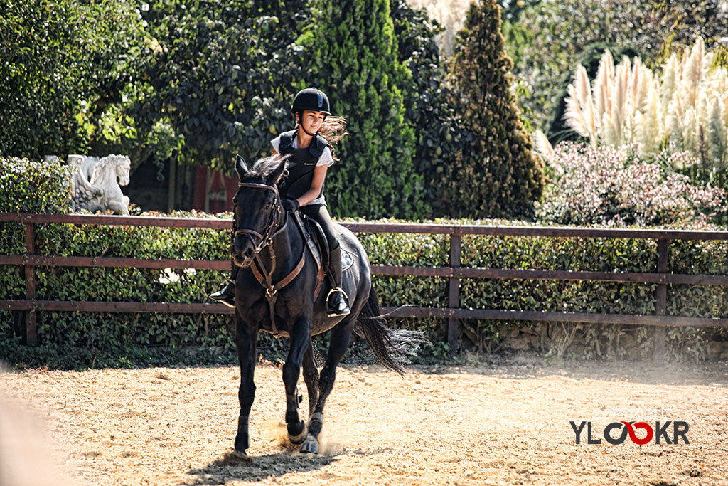 International K9&Horse Club; At Eğitimi; Binicilik; Atlı spor  9